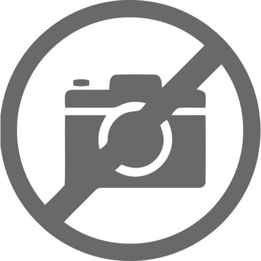 35100 Jucar S1P Src Munkavédelmi Cipő